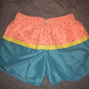 Other - Chubbies Swimsuit